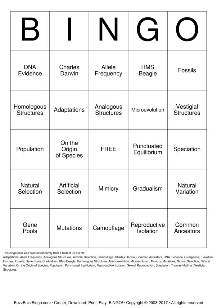 Download EVOLUTION BINGO GAME Bingo Cards