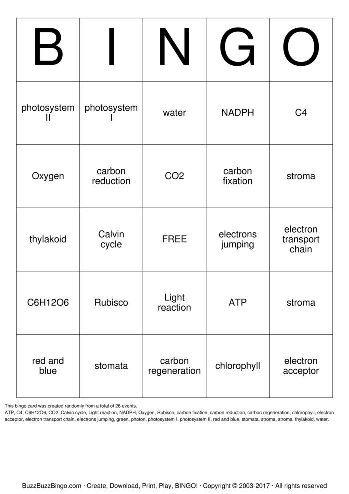 Photosynthesis Recipe Card Photosynthesis Bingo Cards to