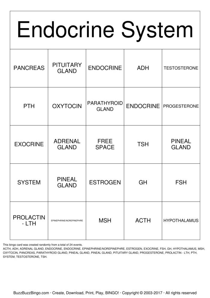 Download Free Endocrine System Bingo Cards
