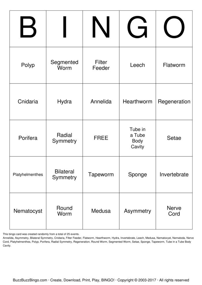 Download Simple Invertebrate Bingo Cards