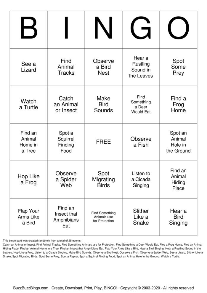 Download Free Animal Behaivor Bingo Cards